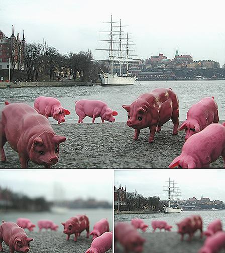 Pigs and Sailship